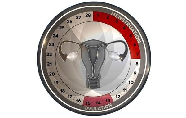 período fértil 5
