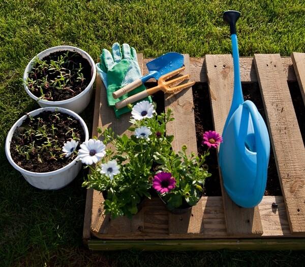 canteiros e jardins com paletes