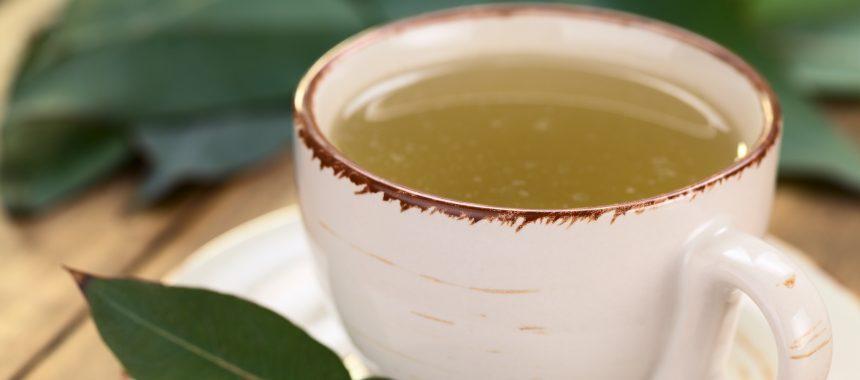 Receitas de chás que você deve tomar para combater dor de garganta